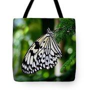 Butterfly II Tote Bag