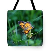 Butterfly In Square  Tote Bag