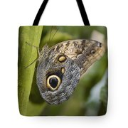 Butterfly On A Green Branch Niagara Tote Bag