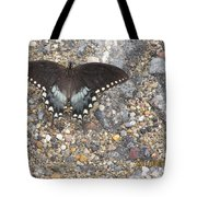 Butterfly On My Hike Route Tote Bag