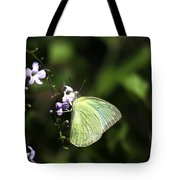 Butterfly On Purple Flower Tote Bag