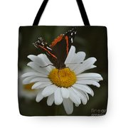 Butterfly On Shasta Daisy Tote Bag