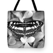 Butterfly Study #0061 Tote Bag