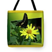 Butterfly Swallowtail 01 16 By 20 Tote Bag