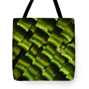 Butterfly Wing Scales Tote Bag