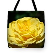 Buttery Rose Tote Bag