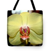 Buttery Tote Bag