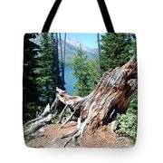 By Jenny Lake Tote Bag