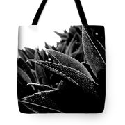By The Estuary Shore  Tote Bag