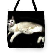 C-a-t In Repose  Tote Bag