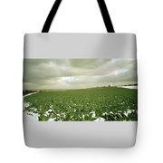 Kent In England Tote Bag