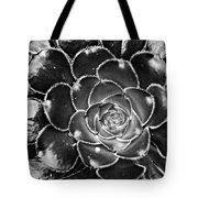 Cactus 10 Bw Tote Bag