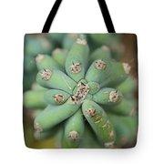 Cactus 25 Tote Bag