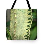 Cactus 60 Tote Bag