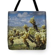 Cactus Also Called Teddy Bear Cholla Tote Bag
