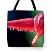 Cactus Orchid Bud Tote Bag