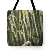 Cactus With Halos Tote Bag