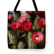 Cactus With Red Flowers Tote Bag