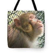 Caged Prayer Tote Bag