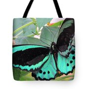 Butterfly Of Many Colors Tote Bag