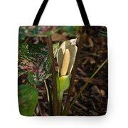 Caladium Flower 2 Tote Bag