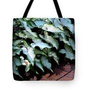 Caladium Shadows Tote Bag