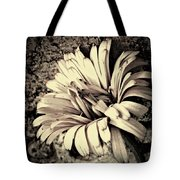 Calendula In Browns Tote Bag