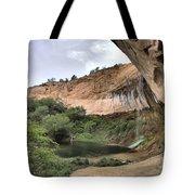 Calf Creek Demon Tote Bag