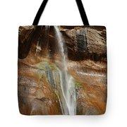 Calf Creek Falls Tote Bag