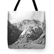 Calico Basin Tote Bag