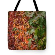 Calico By Nature Tote Bag