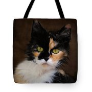Calico Cat Portrait Tote Bag