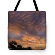 California Oaks And Sunrise Tote Bag