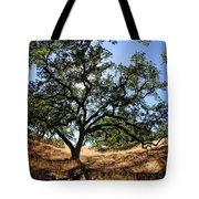 California Oaks Tote Bag