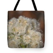 California Snow 2 Tote Bag