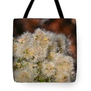 California Snow Tote Bag