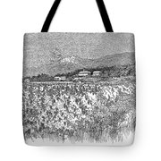 California: Vineyard, 1889 Tote Bag by Granger