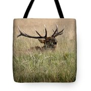 Call Of The Wild 1 Tote Bag