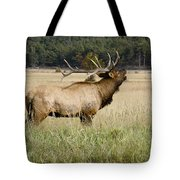 Call Of The Wild 2 Tote Bag