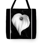 Calla Lily In Black And White Tote Bag
