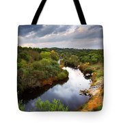 Calm River Tote Bag by Carlos Caetano