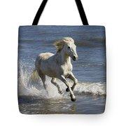 Camargue Horse Equus Caballus Running Tote Bag