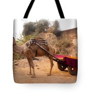 Camel Yoked To A Decorated Cart Meant For Carrying Passengers In India Tote Bag