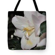 Camellia 18 Tote Bag