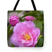 Camellia Camellia X Williamsii Donation Tote Bag