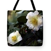 Camellia Nineteen Tote Bag