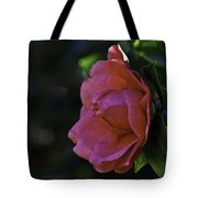 Camellia Twenty-five  Tote Bag