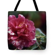 Camellia Twenty-one  Tote Bag
