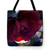 Camellia Twenty-six  Tote Bag