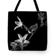 Campanula In Black And White Tote Bag